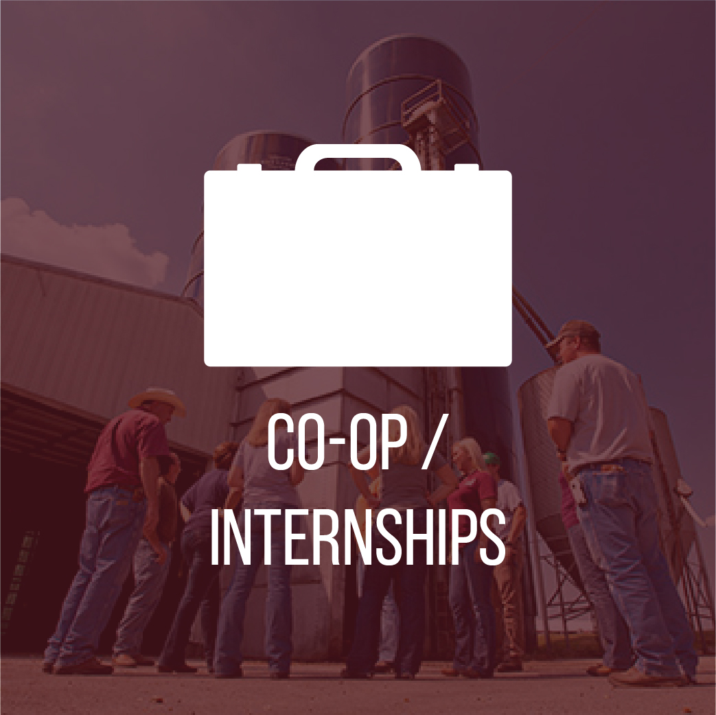 Careers and Coop